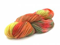 Hand-painted Ceibo Yarn Merino Blend Alegria A8686